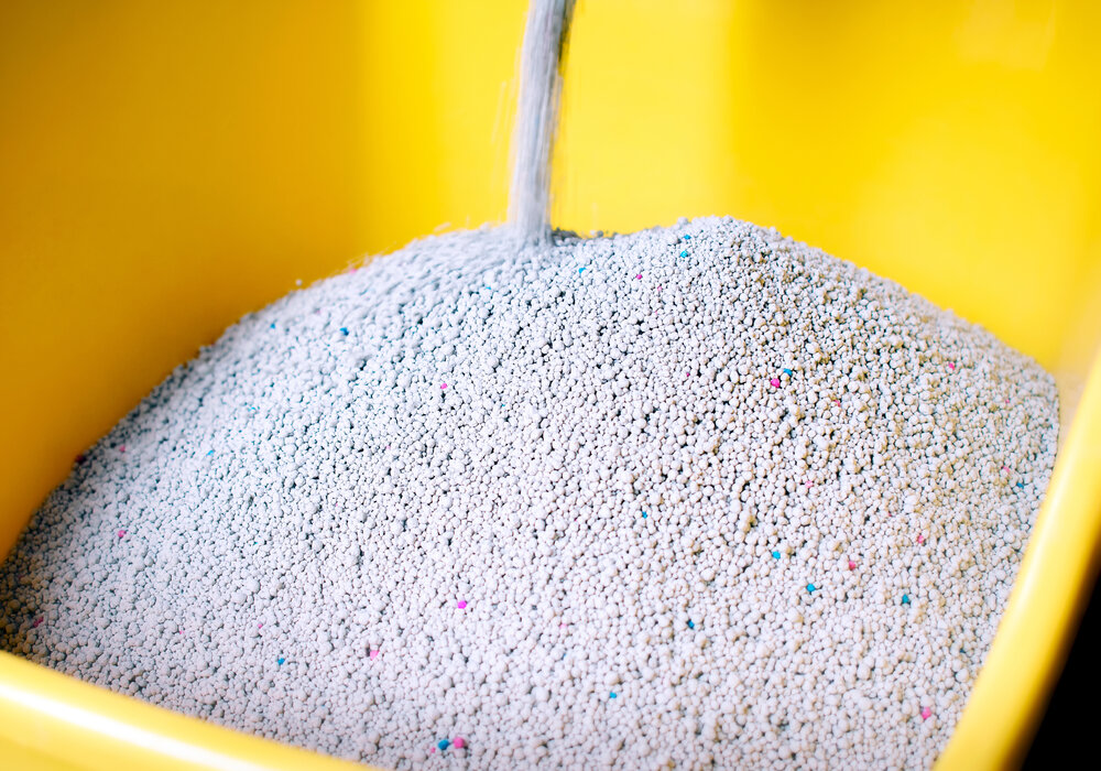 How to Dispose of Cat Litter