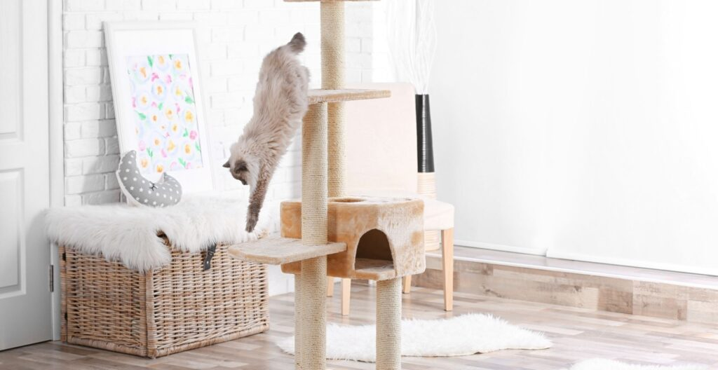 best-cat-tree-for-small-apartment
